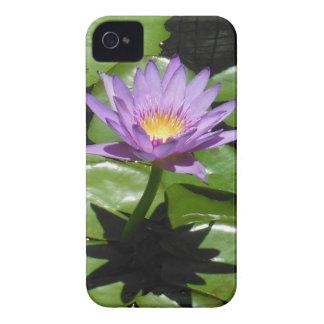 Hawaii Lotus Flower iPhone 4 Cases