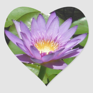 Hawaii Lotus Flower Stickers