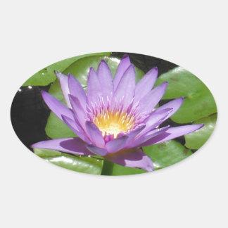 Hawaii Lotus Flower Oval Stickers