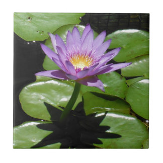 Hawaii Lotus Flower Ceramic Tiles
