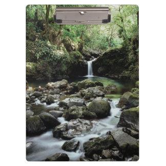 Hawaii, Maui, A waterfall flows into Blue Pool Clipboard