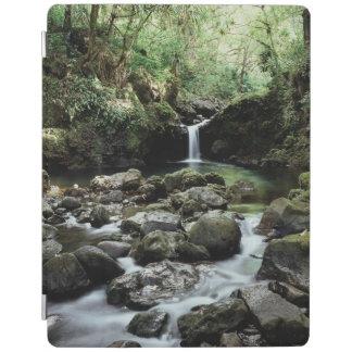 Hawaii, Maui, A waterfall flows into Blue Pool iPad Cover