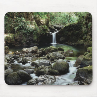 Hawaii, Maui, A waterfall flows into Blue Pool Mouse Mat