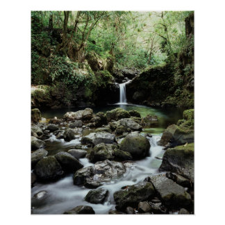 Hawaii, Maui, A waterfall flows into Blue Pool Poster