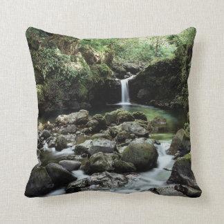 Hawaii, Maui, A waterfall flows into Blue Pool Throw Pillow