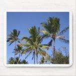 Hawaii Palms Mouse Pad