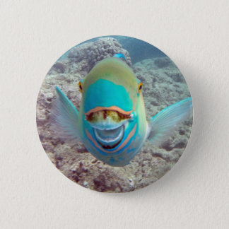 Hawaii Parrot Fish 6 Cm Round Badge