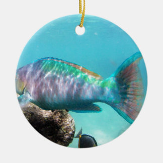 Hawaii Parrot Fish Christmas Ornament
