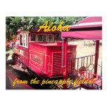 Hawaii Pineapple Train Postcard