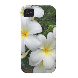 Hawaii Plumeria Flowers iPhone 4/4S Cases