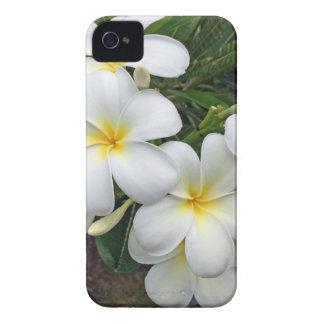 Hawaii Plumeria Flowers Case-Mate iPhone 4 Cases