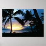 Hawaii Print