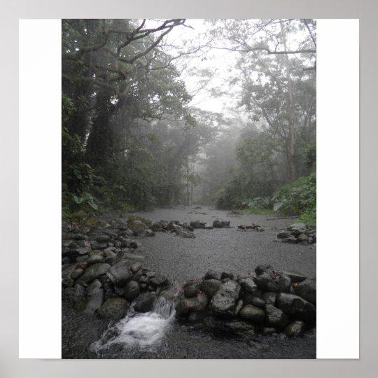 Hawaii Rain Poster