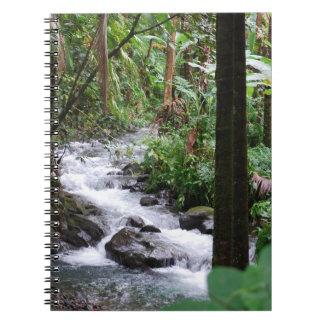 Hawaii Rainforest Notebooks