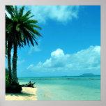 Hawaii Scenic Tropical Beach Poster