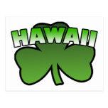 Hawaii Shamrock Postcard