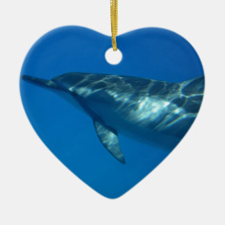 Hawaii Spinner Dolphin Christmas Ornament