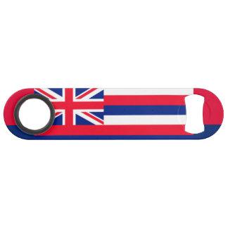 Hawaii State Flag Design