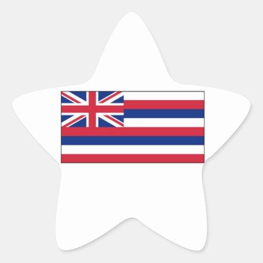 Hawaii State Flag Star Sticker