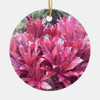 Hawaii Ti leave plant Round Ceramic Decoration