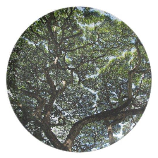 Hawai'i Treetops Plate