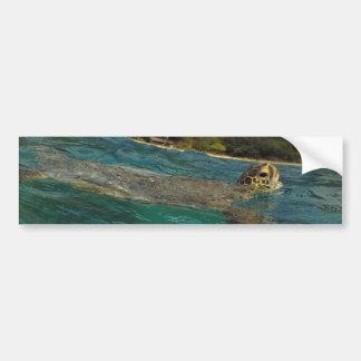 Hawaii Turtles - Honu Bumper Sticker