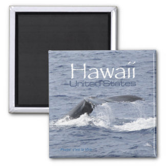 Hawaii USA Magnet Whale Travel Souvenir