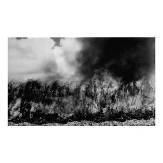 Hawaii - View of Sugar Cane Field on Fire Poster