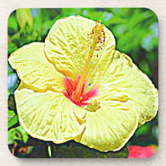 Hawaii Yellow Hibiscus Beverage Coasters