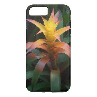 Hawaiian Bromeliads iPhone 7 Plus Case
