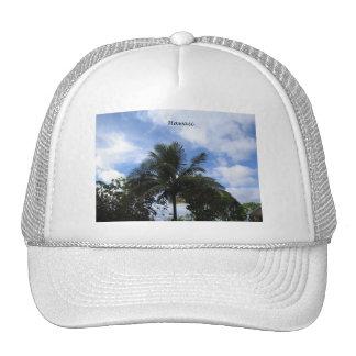 Hawaiian Coconut Palm Trucker Hats