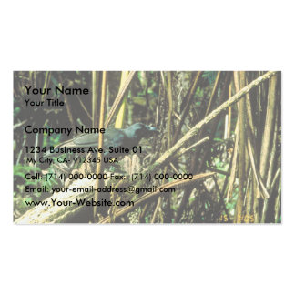 Hawaiian Crow Business Card Templates