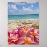 Hawaiian Dayz Poster
