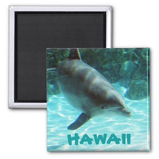 Hawaiian Dolphin collection Magnet