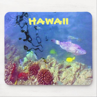 Hawaiian Fish Mousepad