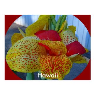Hawaiian Floral Postcard