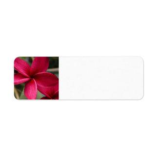 Hawaiian Flower Mailing Label Return Address Label