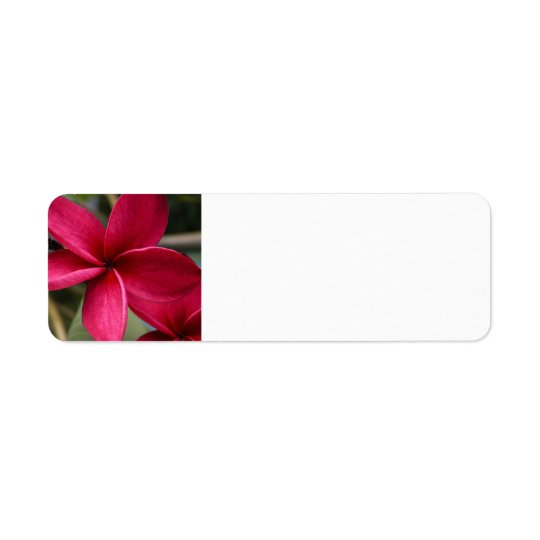 Hawaiian Flower Mailing Label Return Address Label