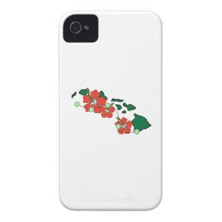 Hawaiian Flowers iPhone 4 Covers