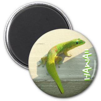 Hawaiian gecko magnet