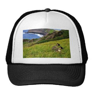 Hawaiian Geese - Nene Hat