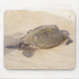Hawaiian Giant Sea Turtle Mouse Mat