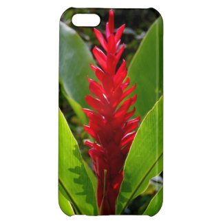 Hawaiian Ginger Case For iPhone 5C