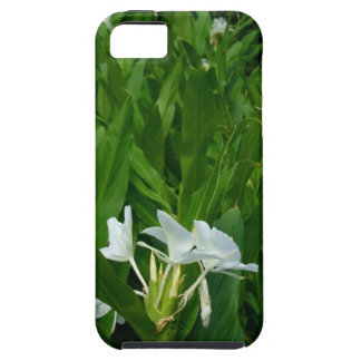 Hawaiian Ginger Case For The iPhone 5