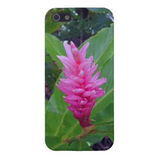 Hawaiian Ginger iPhone 5/5S Cover