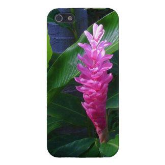 Hawaiian Ginger iPhone 5 Cases