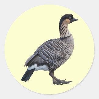 Hawaiian Goose (Nene) Sticker