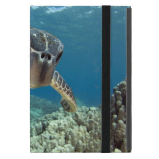 Hawaiian Green Sea Turtle Cover For iPad Mini