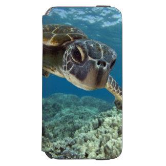 Hawaiian Green Sea Turtle Incipio Watson™ iPhone 6 Wallet Case