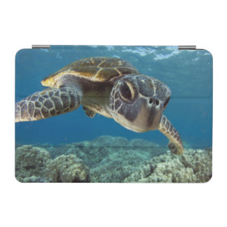 Hawaiian Green Sea Turtle iPad Mini Cover